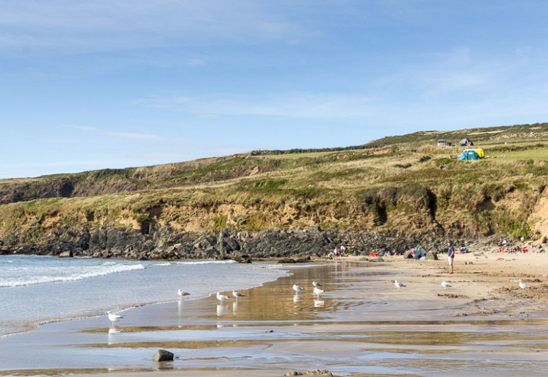 Whitesands_camping_pembrokeshire_23_20140109_1094462066